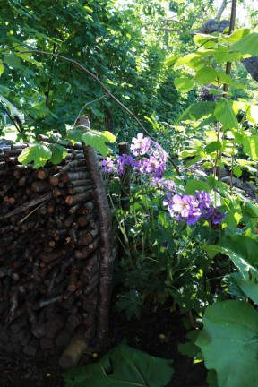 14 juni komposthörnan lunden 4
