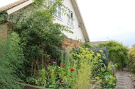 27 aug 17 trädgårdslandet honungsros odlingsbäddar