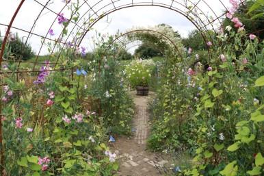 juli 17 le jardin plume 46