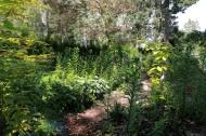 trädgård 3 sta riksmöte 2018 16