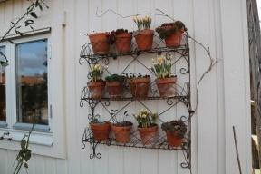 3 mars 19 krukhyllan trädgårdsboden